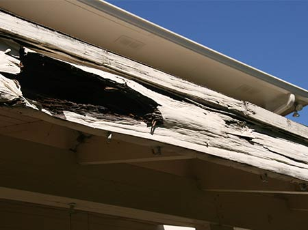 Rotten Boards on House